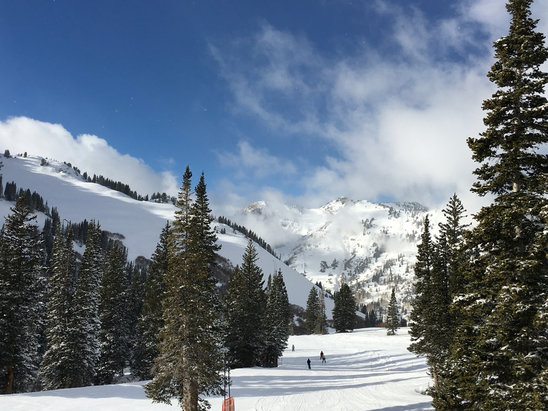 Alta Ski Area - Skiing is amazing and scenic beauty is the best  - ©Donald Layman's iPhone