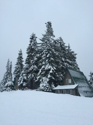 Grouse Mountain - Great snow.  - ©iPhone