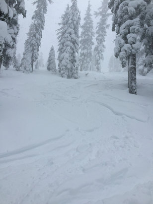 Northstar California - Dumping at Northstar.  Powder increasing.in depth.  Low visibility but awesome  - ©Paul Binder's iPhone