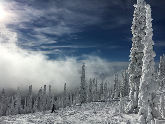 Montana Snowbowl - Firsthand Ski Report - ©anonymous user