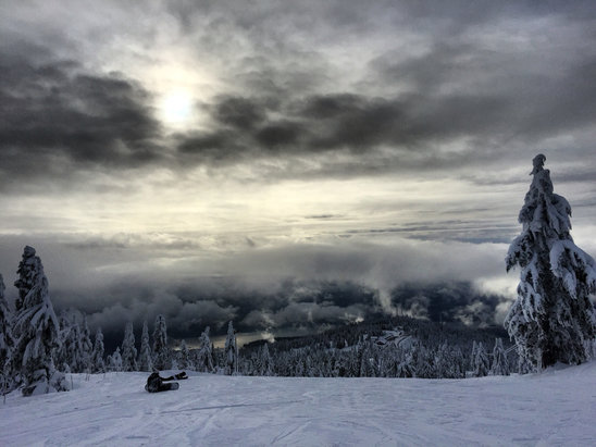 Mt Seymour - Seymour is too good these days ! Only bummer is the lack of visibility here and there  - ©Diane's iPhone