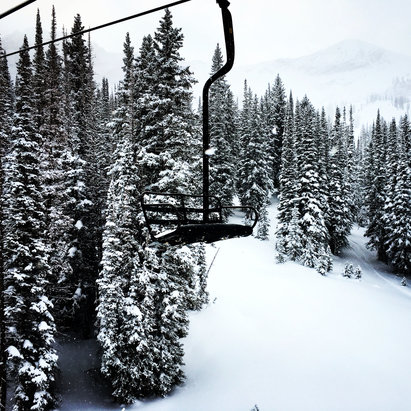 Alta Ski Area - Coming down hard! Still can make first tracks! Pretty great day   - ©Kyndell Highland's iphon