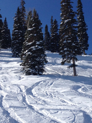Sunlight Mountain Resort - Powder on Blue Tango Christmas Eve! - ©Amy's iphone
