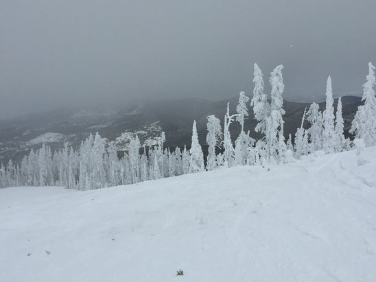 Blacktail Mountain Ski Area - Glades were barely touched and snow was soft. Great Christmas Eve and Christmas Day!  - ©johns phone
