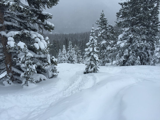 Monarch Mountain - Firsthand Ski Report - ©drishti