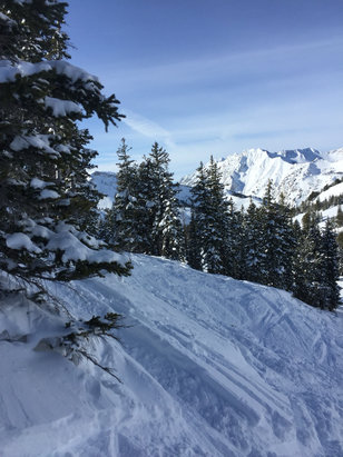 Alta Ski Area - Blue sky, great conditions, more terrain open thanks to patrol efforts.  Sun kept us warm. - ©Michael's iPhone
