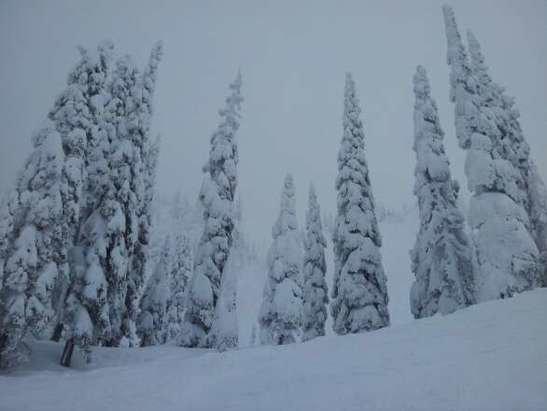 Fernie Alpine - epic day!!powder ,a bit windy but very nice day!!!wow - ©francegautreau