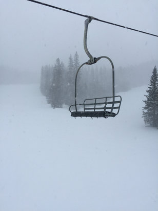 Sunrise Park Resort - There over the past 2 days. Great powder! No lines on Apache and Cyclone.  - ©anonymous user