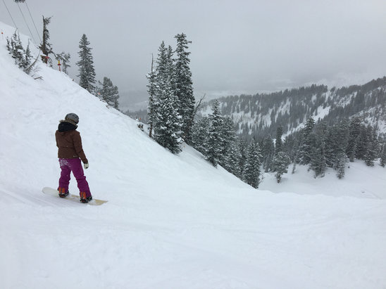 Solitude Mountain Resort - Awesome powder in Honeycomb and elsewhere, perfect day! - ©dowdlemj