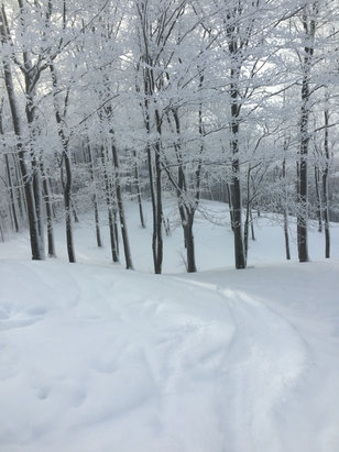 Nubs Nob Ski Area - Firsthand Ski Report - ©jay