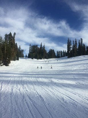 Badger Pass - Great runs today at Badger. Snow was perfect. Had a blast!!!!! - ©Stu's iPhone