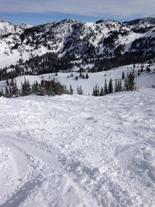 Alta Ski Area - Greeley bowl on Thursday after 6