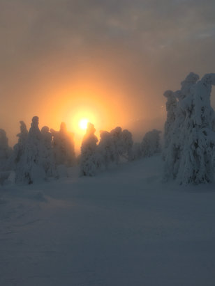 Ruka - Like nowhere I've ever skied before. This is sunrise @10am - ©iPhone