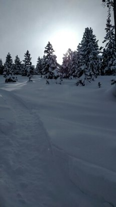 Ski Granby Ranch - Awesome snow, lots of fun without the crowds! - ©woodwardbuilds