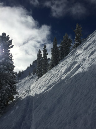 Alta Ski Area - Firsthand Ski Report - ©pow