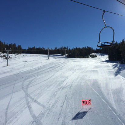 June Mountain - 40 degrees but great conditions. Not lines no people anywhere - ©arborallday