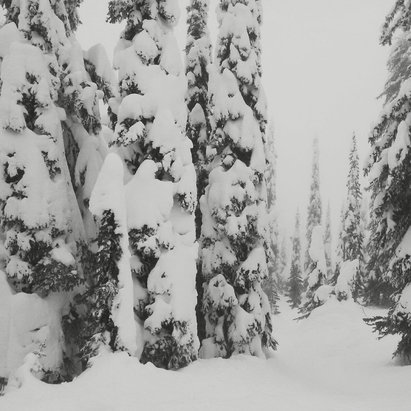 Big White - Great powder, poor visibility - ©Oliviana's iPhone (2)