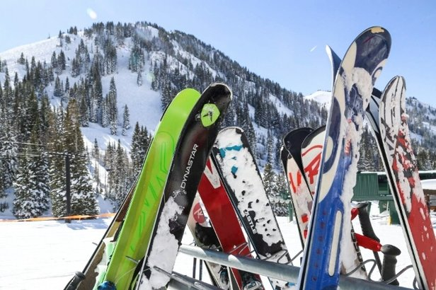Alta Ski Area - Firsthand Ski Report - ©fchin7