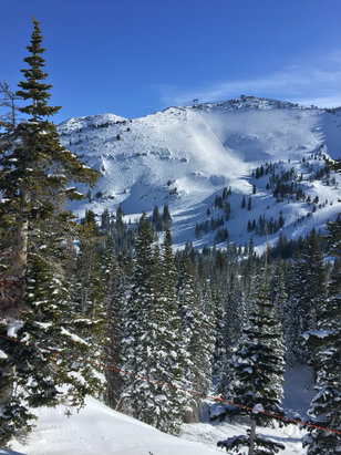 Snowbird - Beaut Day at the Bird - over 315 inches for the year, close to 100 inch base - ©Slowdive