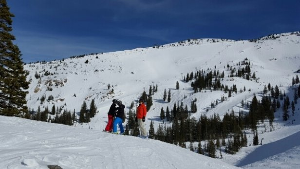 Snowbird - Snowbird was awesome!  Perfect conditions, Great terrain if you like bowls, and are intermediate skiers.  Worth the trip while your in Salt Lake. - ©gabdor67