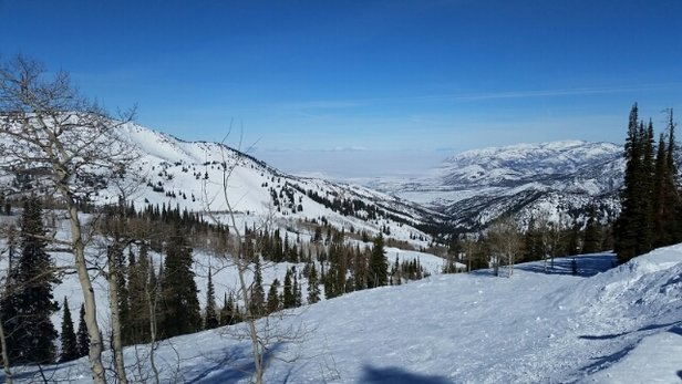 Powder Mountain - Beautiful weather. a perfect day.  - ©omorex