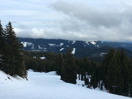 Mt. Hood Meadows - Nice quiet day, good snow, beautiful weather. - ©Di6s