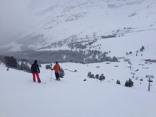 Grindelwald - First - Visibilité réduite ce qui est provocateur de chute quand on est débutant. Par contre la neige est fraiche, quelques rares plaques de verglas. - ©iPhone