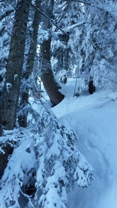 Les Gets - backcountry at Mont Chery - ©Lunacezione