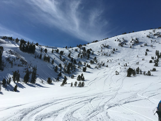 Soldier Mountain Ski Area - Excellent CatSkiing up at 9500ft...doesn't get any better than Soldier Mountain in Idaho! - ©tyler's iPhone