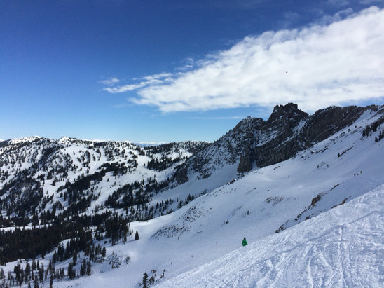 Alta Ski Area - Bluebird and warm! - ©Shelby Blair's iPhone
