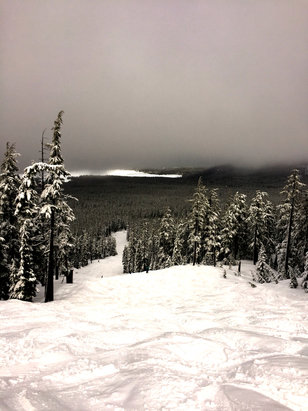 Mt. Bachelor - Great day on the hill Northwest Express section was killer pow.  - ©Alex's iPhone 6