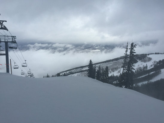 Beaver Creek - Powder day!  Depending where you are and which way the wind is blowing, 1-3 - ©Ian's iPhone