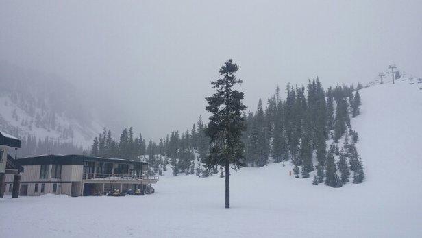 Hoodoo Ski Area - Firsthand Ski Report - ©seventysevenralph