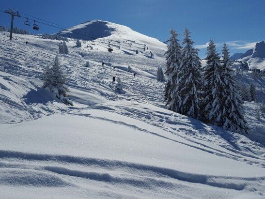 Morzine - Perfect conditons... bright blue sky, 1mm of fresh powder at top, pistes have a light dusting. Fantastic! - ©luke.negal