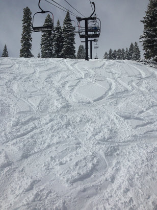 Homewood Mountain Resort - Great powder.  Fresh lines and falling snow!   - ©Chrissy Beretta's iPhone