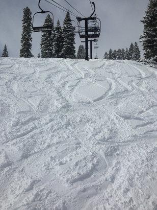 Homewood Mountain Resort - Great powder.  Fresh lines and falling snow!   - ©Chrissy Beretta's iPhone