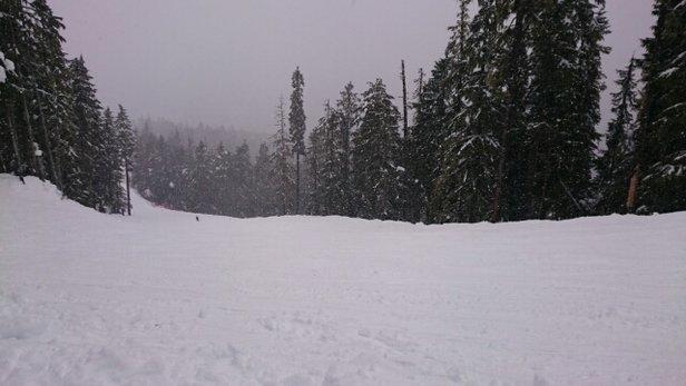 Whistler Blackcomb - Starker Wind, nur ein Drittel des Gebiets geöffnet. - ©MG