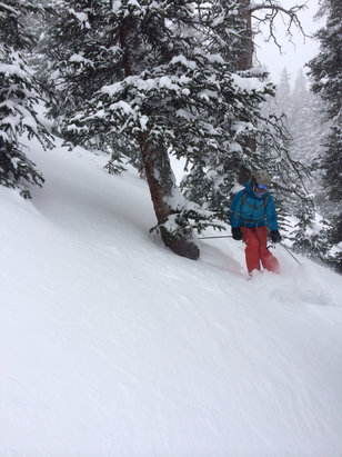 Keystone - Awesome powder day in trees in North Bowl   - ©Owner's iPhone