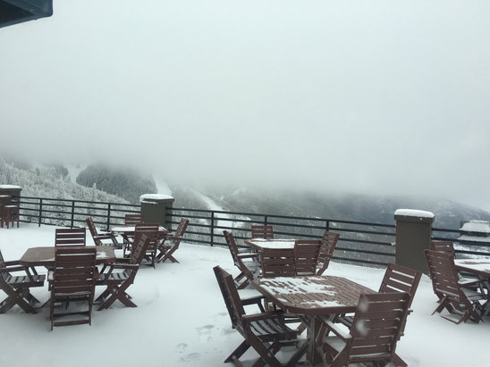 Steamboat - Whiteout conditions up high but if you get out of the wind, skiing is phenomenal. Stay off high noon, completely wind blown and really hard to see. Pic is from upper deck of thunderhead.   - ©SPUR
