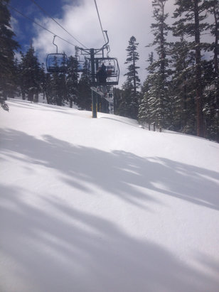Heavenly Mountain Resort - Here is your first hand ski report! Face shots from first to last chair.  - ©Stagecoach local