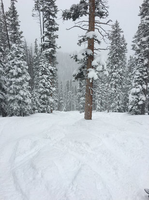 Winter Park Resort - Knee deep eagle wind side! Best day all year  - ©iPhone