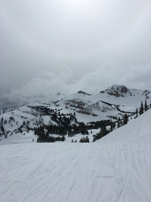 Jackson Hole - Very good in the morning, after 11 got very slushy. - ©Thomas's iPhone