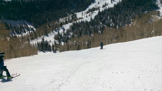 Park City - Beautiful day, a little warm down low, but good snow higher up.  - ©Herecomthehawks
