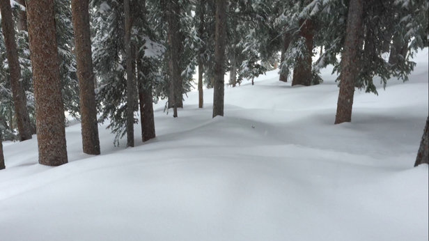 Winter Park Resort - Excellent midwinter type condition w abundant untracked powder.  - ©Chris Leshock's iPhone