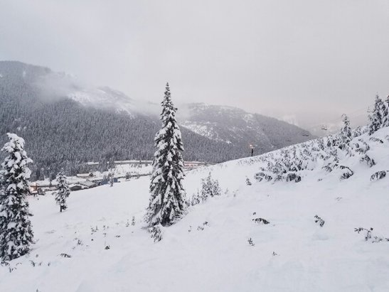The Summit at Snoqualmie - Runs were nice and powdery. Not many people for NYE. Bout to be pow day tomorrow. I left @ 5pm and it was dumping hard! - ©Jesse