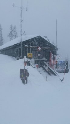 Arizona Snowbowl - I dare any of the Snowbowl haters to say anything negative. I DARE them.  - ©Pimp Daddy