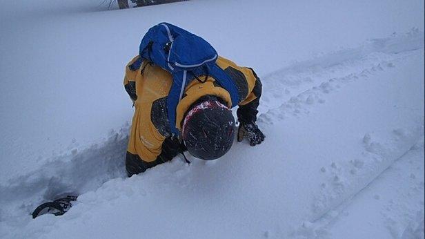Mammoth Mountain Ski Area - Amazing runs if you can get to them! Got stuck in waist deep snow.  - ©MorphGQ
