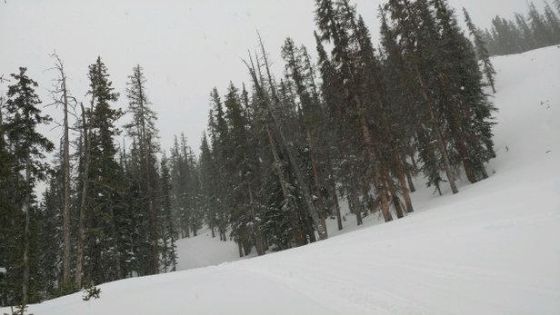 Monarch Mountain - snow was great !  still some powder in the trees and base is soft most everywhere - ©co snow bug