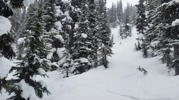 Whistler Blackcomb - Deep! Trees, steeps and bowls were amazing today  - ©gczerepak.gc