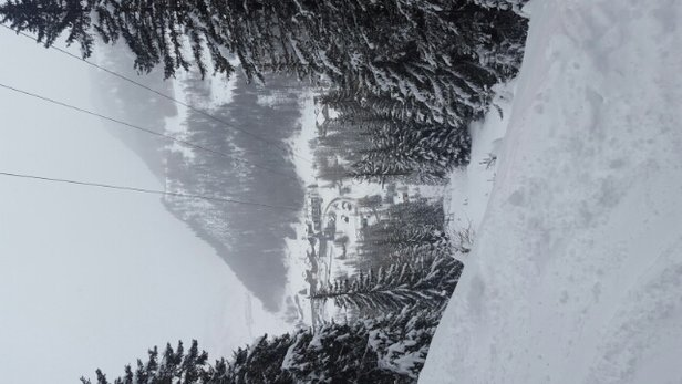 La Thuile - This app is not very accurate on giving updates of fresh snow. But there is piles and piles of powder  - ©anonymous